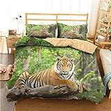 HNHDDZ Junge Teen Bettbezug und Kissenbezug 3D Tier Tiger Dinosaurier Zebra Leopard Löwe...