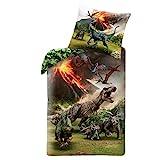 JW Dino Jungen-Bettwäsche · 1 x Kissenbezug 80x80 + 1 x Bettbezug 135x200 cm · Jurassic World...